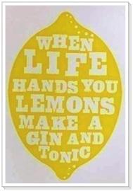 When life sends you lemons...